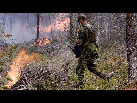 När Sverige brinner kommer hjältarna fram