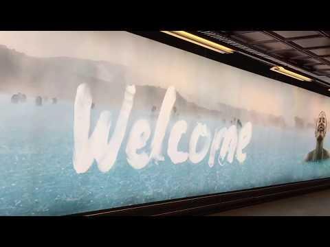 【Vlog】Travel With MOMO #Iceland