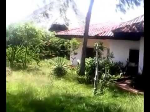 Three Bedroom Beach Front Property For Sale In Malindi Beach On 1 Acre