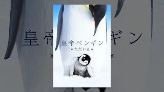 産卵を終えた母ペンギンは大切な卵を父ペンギンに渡し、一路海へ。父は...