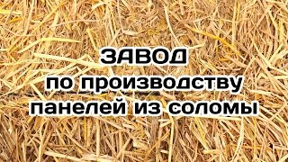 Завод по производству плит из соломы. СтраМит. Единово.(, 2016-04-14T11:05:38.000Z)
