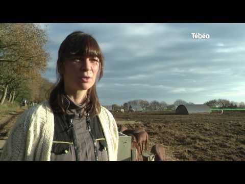 À Guiclan, Anne-Gaëlle Arzel développe une exploitation agricole bio.