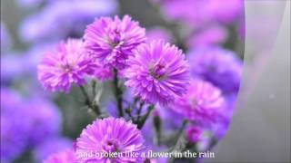 FLOWER IN THE RAIN by Jaci Velasquez (with lyrics)
