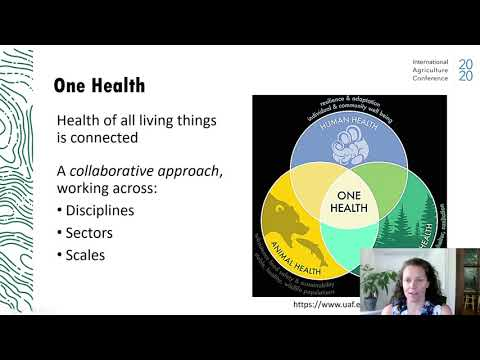 One Health and Planetary Health
