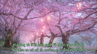 [เนื้อร้องไทย+pinyin] เพลง ความฝันกับใบซากุระ ver.จีน 《遇蛇》Yume to Hazakura