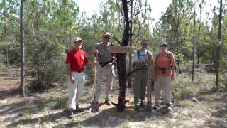 Florida Trail: Marking the Highest Point