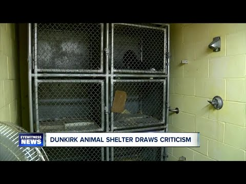 State Of Animal Shelter Concerns Neighbors In Dunkirk