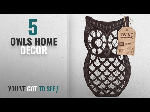 Top 10 Owls Home Decor [2018 ]: Country Cottage Wise Owl Distressed Metal Cork Collector by Twine