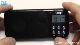 Musky HJ-92 - акустика с FM-радио и фонариком(!).
