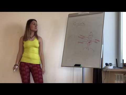 Менструальный цикл у женщин: фазы по дням