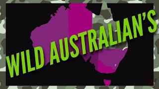 Insect World 🐜🐜🐜Ant Colony Interaction🐜🐜🐜 - Myrmecology - Formics - Myrmeco - Entomology