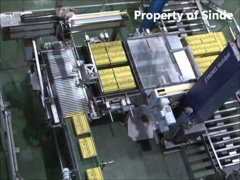 Sinde Budi Sentosa Indonesia Pharmacy Manufacturer  Can Machine - Cartonizer & Palletizer.wmv