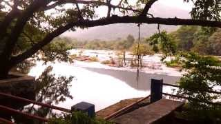 Kerala Treehouse Near River - Tree House Video
