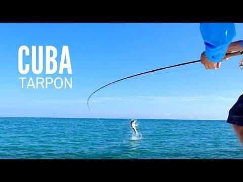 Fly Fishing Cuba For Tarpon