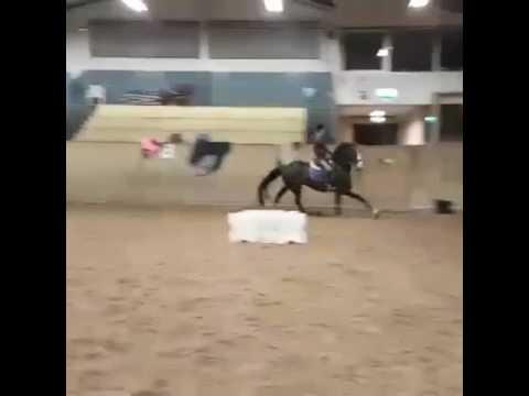 kulla hästgård