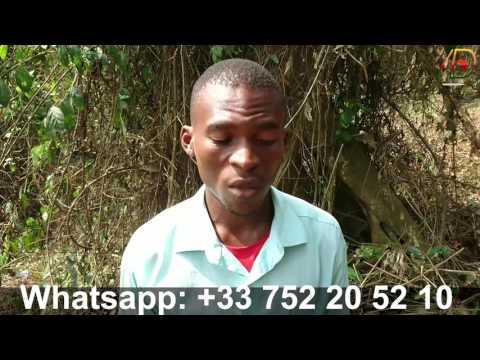 "Buzz: comment lancer sa plantation de mais"" : Eseka Cameroun"