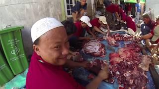 Acara pemotongan hewan qurban Majelis Ta'lim Al Irsyadiyyah 1345 H