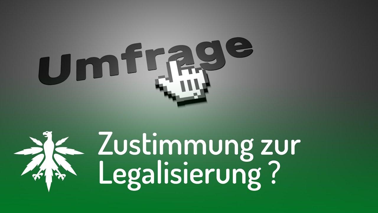 Zustimmung zur Legalisierung in Deutschland gesunken!? | DHV News ...