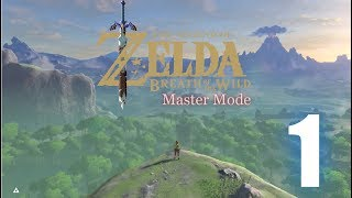 breath of the wild master mode playthough