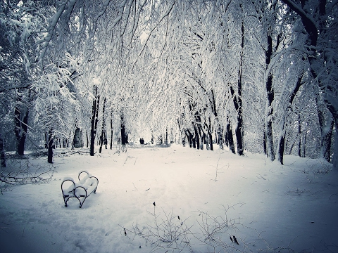 Sad Piano & Violin Music ♥♫ A Winters Wish Compilation ♥♫