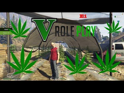 épisode 1 de GTA V RP On va faire du cannabis