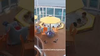 Обзор отдыха на лайнере