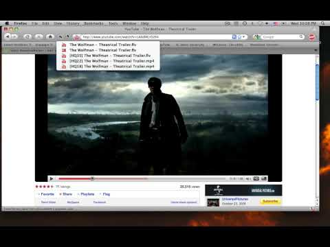 Using a FireFox Addon to Download Flash Videos