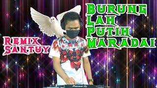 DJ BURUNG LAH PUTIH MARADAI | TAKABEK GADIH RANTAU