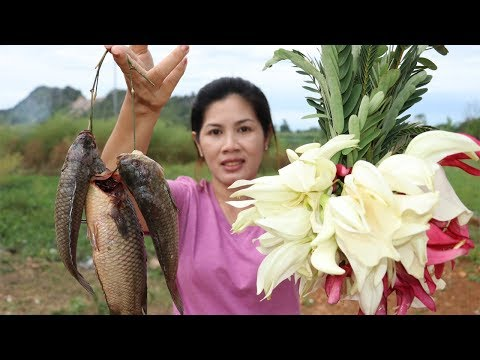 Awesome Cooking Fish Soup With Vegetable (agati) Recipe - Cook Fish Recipes - Village Food Factory