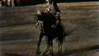 Святые старцы  (1995)