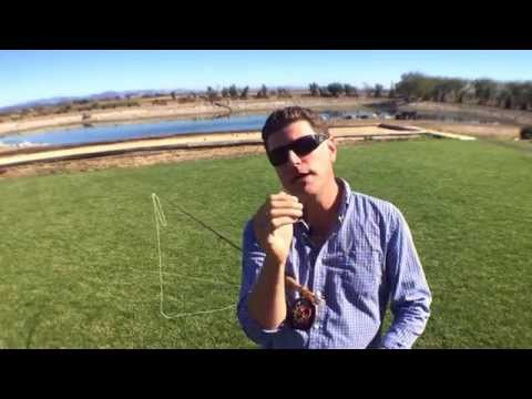 Principle Three: Stop The Rod - Leland Method Of Fly Casting