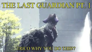 Trico why you do this!? - The Last Guardian pt. 1