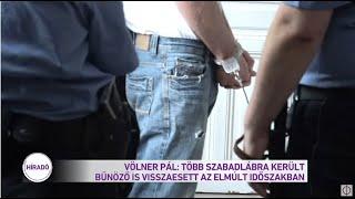 Völner Pál: több szabadlábra került bűnöző visszaesett az elmúlt időszakban