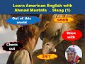 most common American idioms in 2020 - episode one