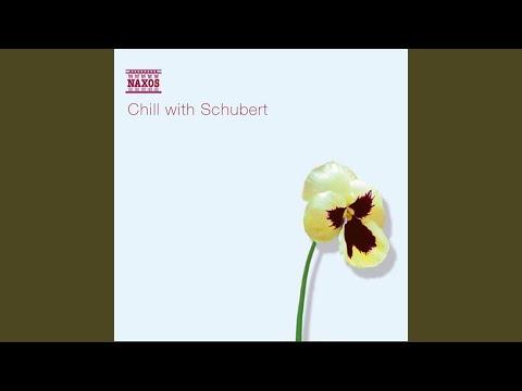 Schwanengesang, D. 957: No. 4. Standchen (Serenade)