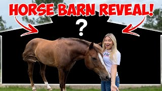 WE BUILT A HUGE HORSE BARN | HORSE BARN TOUR