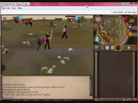 runescape bot video.wmv