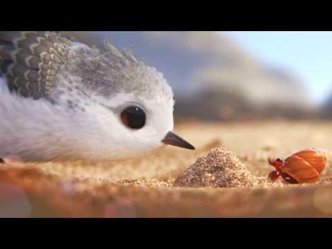 Piper | Clip uit de Pixar Kortfilm voor Finding Dory | Disney BE