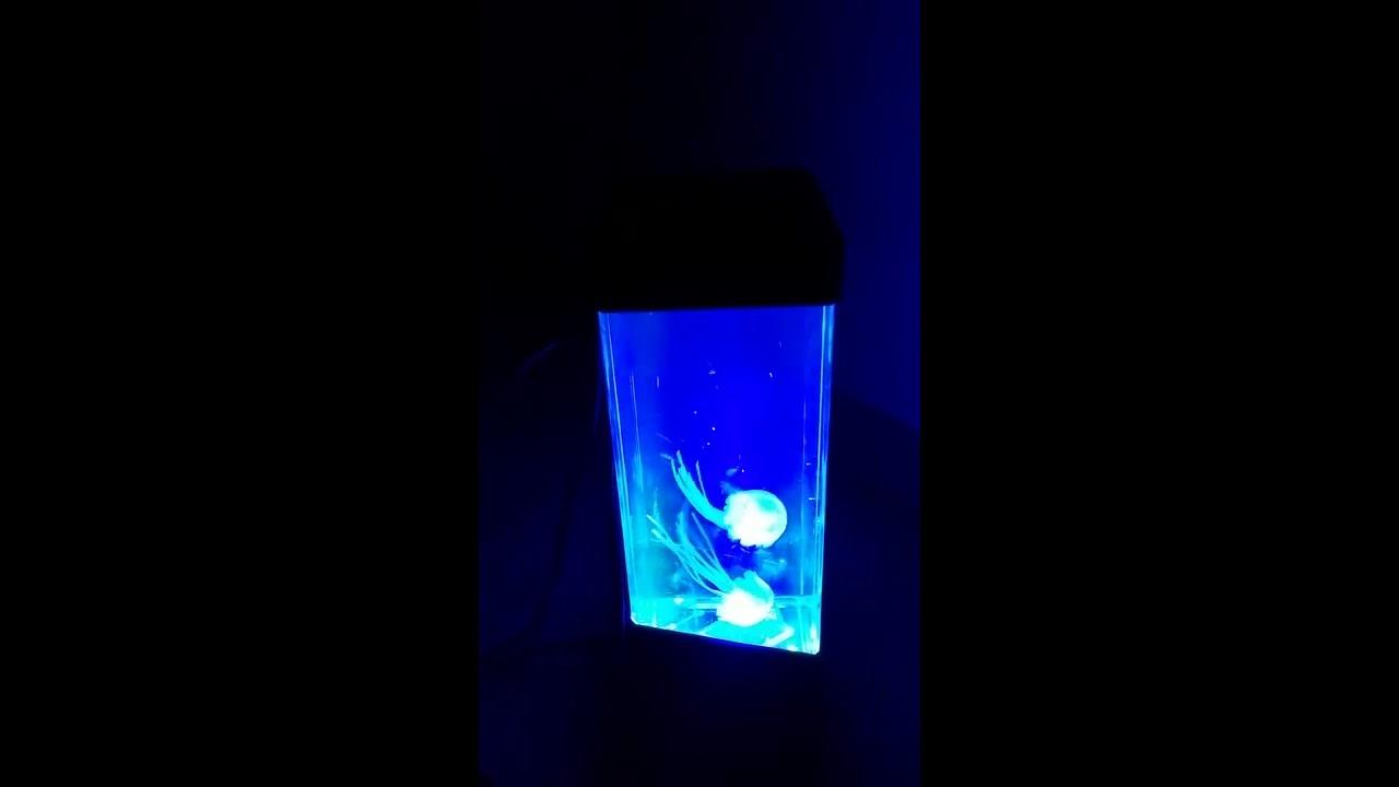 Calover Jellyfish Lamp Electric Jellyfish Tank Aquarium Youtube