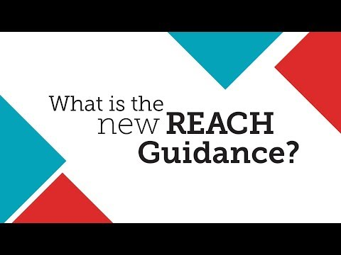 What Is the New REACH Guidance?