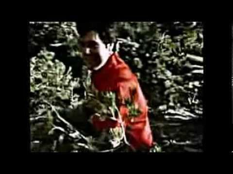 Download Elvis Presley-Loving Arms+lyrics
