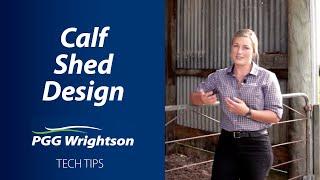 Calf Shed Design   PGG Wrightson Tech Tips