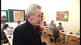 Золотой лев – новый шахматный клуб в Можайске