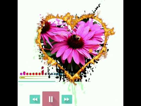 New instrumental Ringtone, Famous ringtone2020, what's app ringtone/Tiktok ringtone,onlymusic, audio