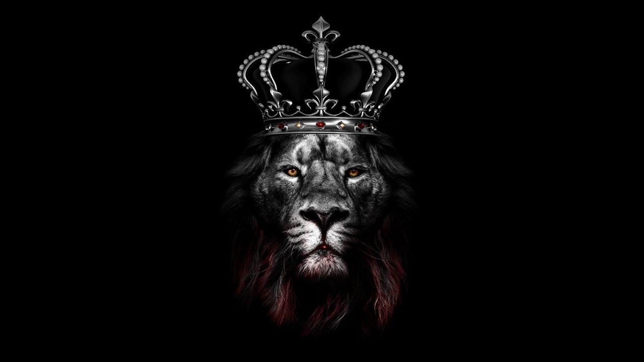 картинка на обои лев в короне точно знает, какая