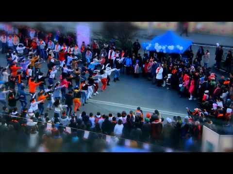 Ankara xvid
