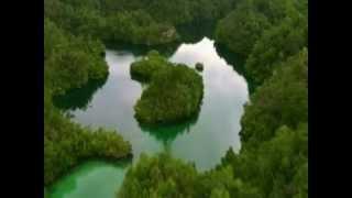 ラジャアンパット空撮(9) Aerial View of Raja Ampat(9)