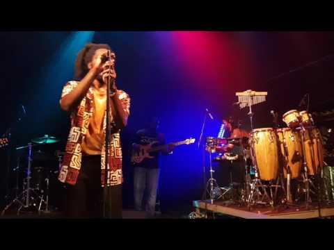 Chronixx & Zinc Fence Redemption Live in Zürich