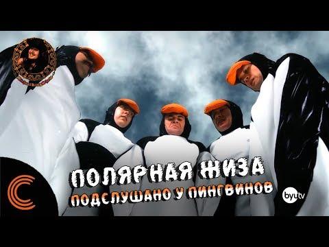 Полярная Жиза: Подслушано у Пингвинов (озвучил MichaelKing) - Studio C Русская Озвучка