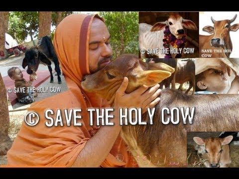 Shree Raghaveshwara Bharathi Swamiji -SAVE THE HOLY COW